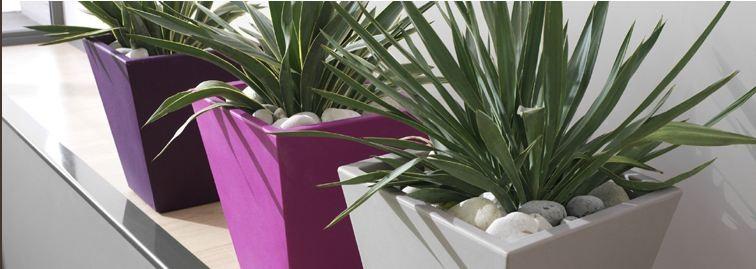 Bac plantes en pvc contemporain grosfillex mod le venice - Bac a plantes ...
